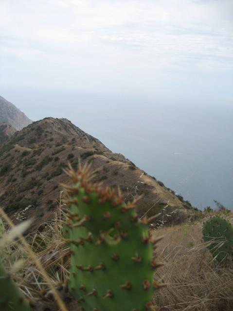 4 X 4 >> A little Hike on Catalina Island Catalina Island Hike
